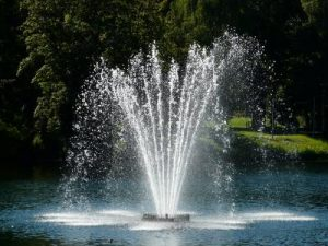 Water-Feature-Pumps-139579815400
